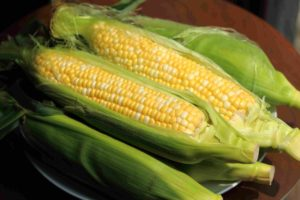 Why is Corn Unhealthy?